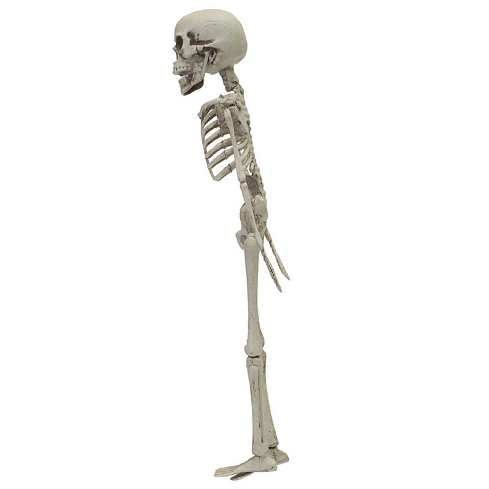 decoration Halloween Party Home Decoration Skeleton Horrid Scare Scene Simulation Human Body Toys Props HOB1195131 2