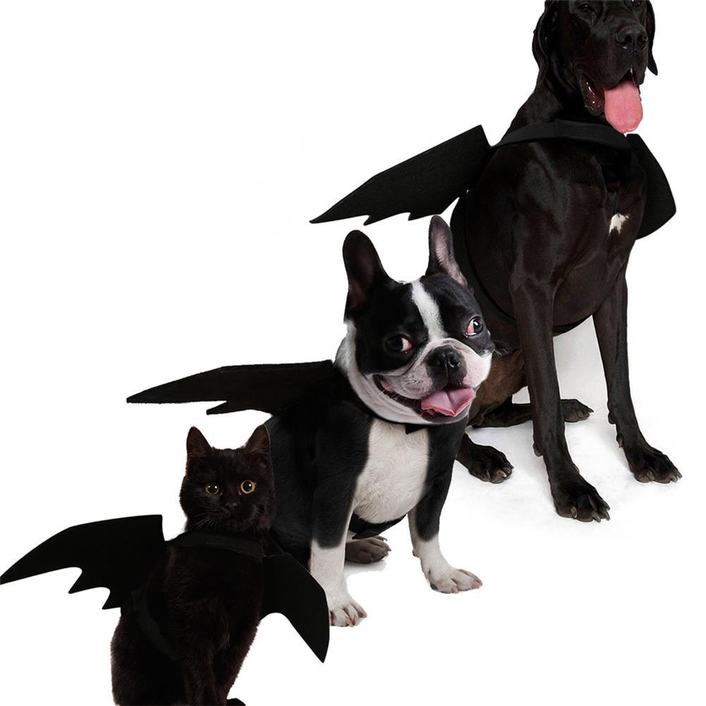 decoration Halloween Black Bat Wings Cute Party Decoration Toys HOB1358168
