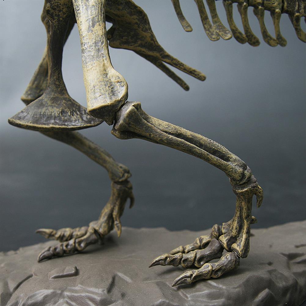 puzzle-game-toys Jurassic Dinosaurs Tyrannosaurus Rex Skeleton Trex Animal Model Kids Toys Gift HOB1367517 3