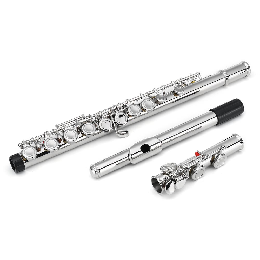 flute 16 Holes C Key Colored Flute Nickel Plated Silver Tube Woodwind instrument with Box HOB1381763 1