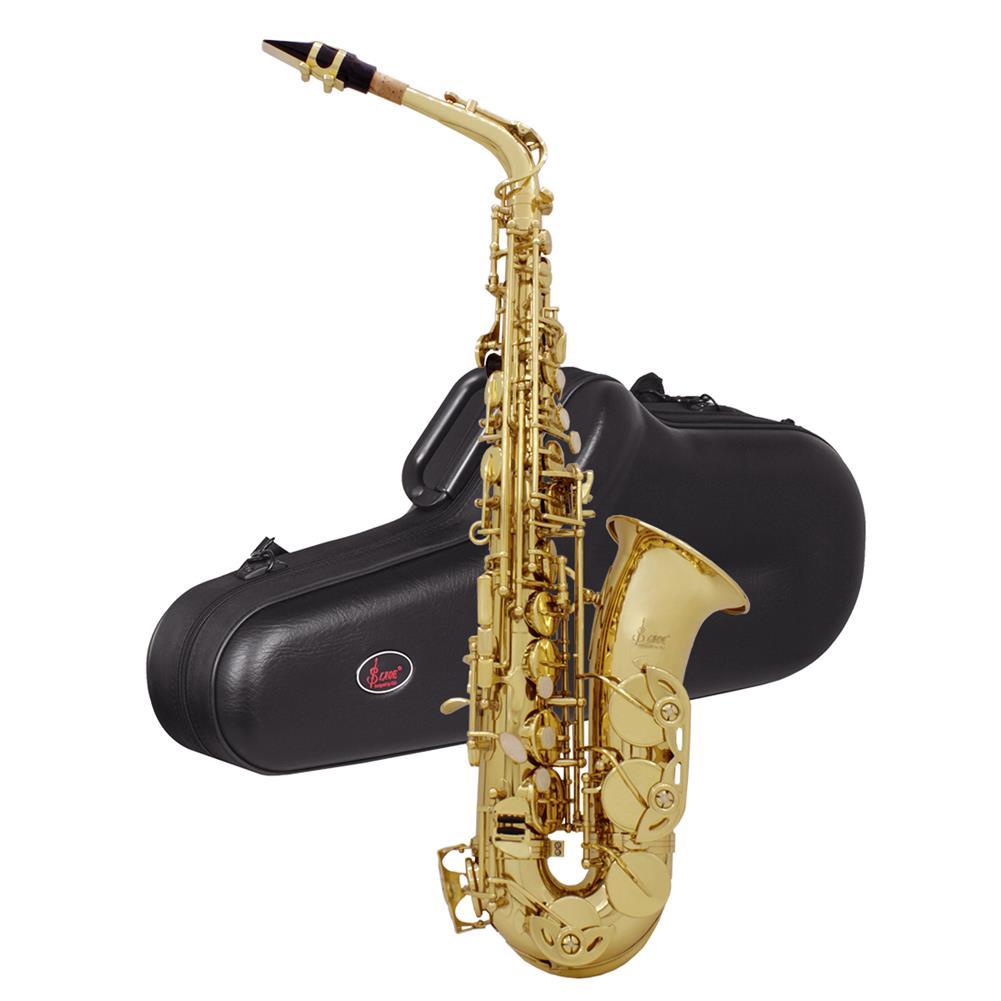saxophone SLADE E-Flat Eb Alto Saxophone Gold Lacquer with Storage Case Kit HOB1696416 1